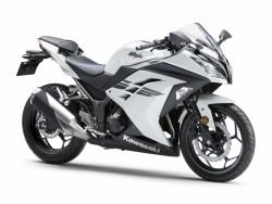 Ninja 300 ABS 2017 Kawasaki